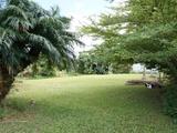 43 Royston Street El Arish, QLD 4855
