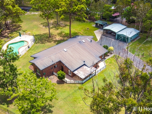 16 Firtree Street Capalaba, QLD 4157