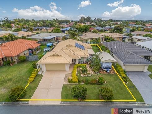 19 Allister Crescent Rothwell, QLD 4022