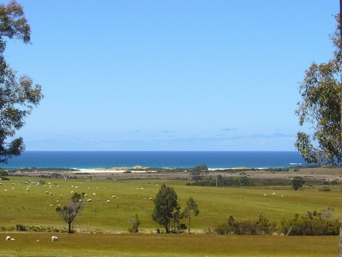 19595 Tasman Highway Seymour, TAS 7215