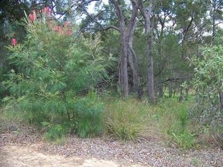 19 Belar Street Lamb Island , QLD, 4184