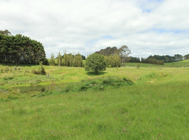Lot 0 Riddell Road Kerikeri property image