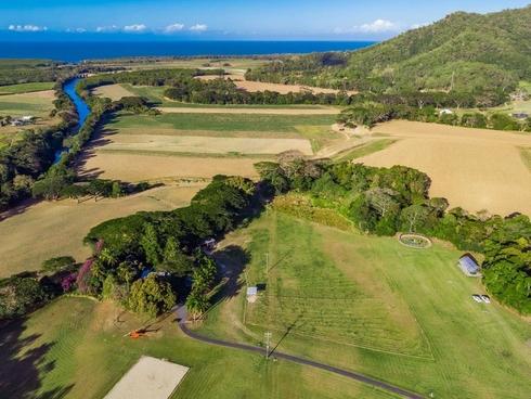 291 Mowbray River Road Mowbray, QLD 4877