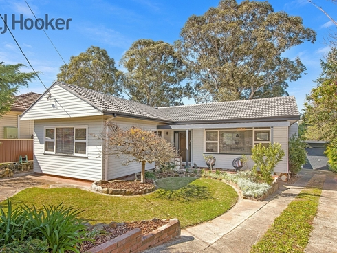 11 Treloar Crescent Chester Hill, NSW 2162