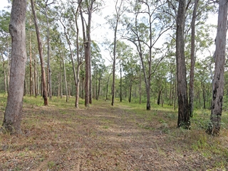 Lot 70 Ashby-Tullymorgan Road Ashby , NSW, 2463