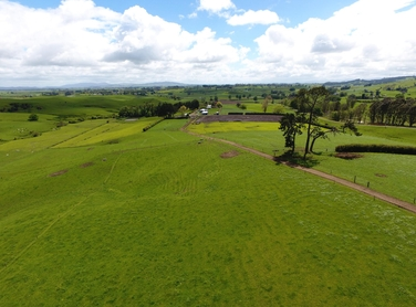 172 Harbottle Road Morrinsville property image