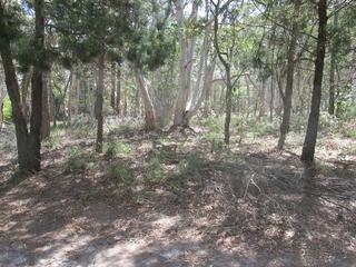 8 Parakeet Street Macleay Island , QLD, 4184