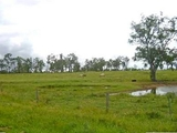 Gatton, QLD 4343