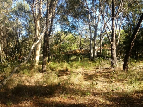 16 Castlewood Crescent Russell Island, QLD 4184