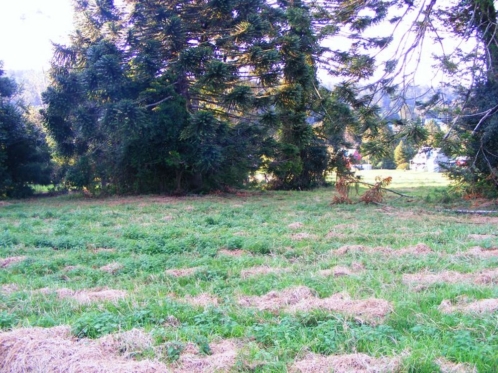 Lot 3 Bunya Mountains Road Bunya Mountains, QLD 4405