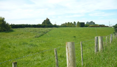 0 cnr Painstown & Maytown Road Waimate property image
