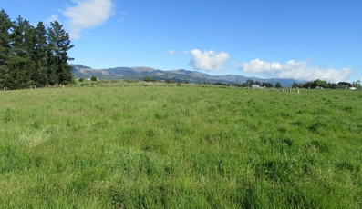 LOT 6 Fitzmaurice Road Waimate property image