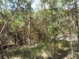 12 Kardinia Street Macleay Island, QLD 4184