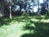 146 Treasure Island Avenue Karragarra Island, QLD 4184