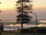 Newport Beach, NSW 2106